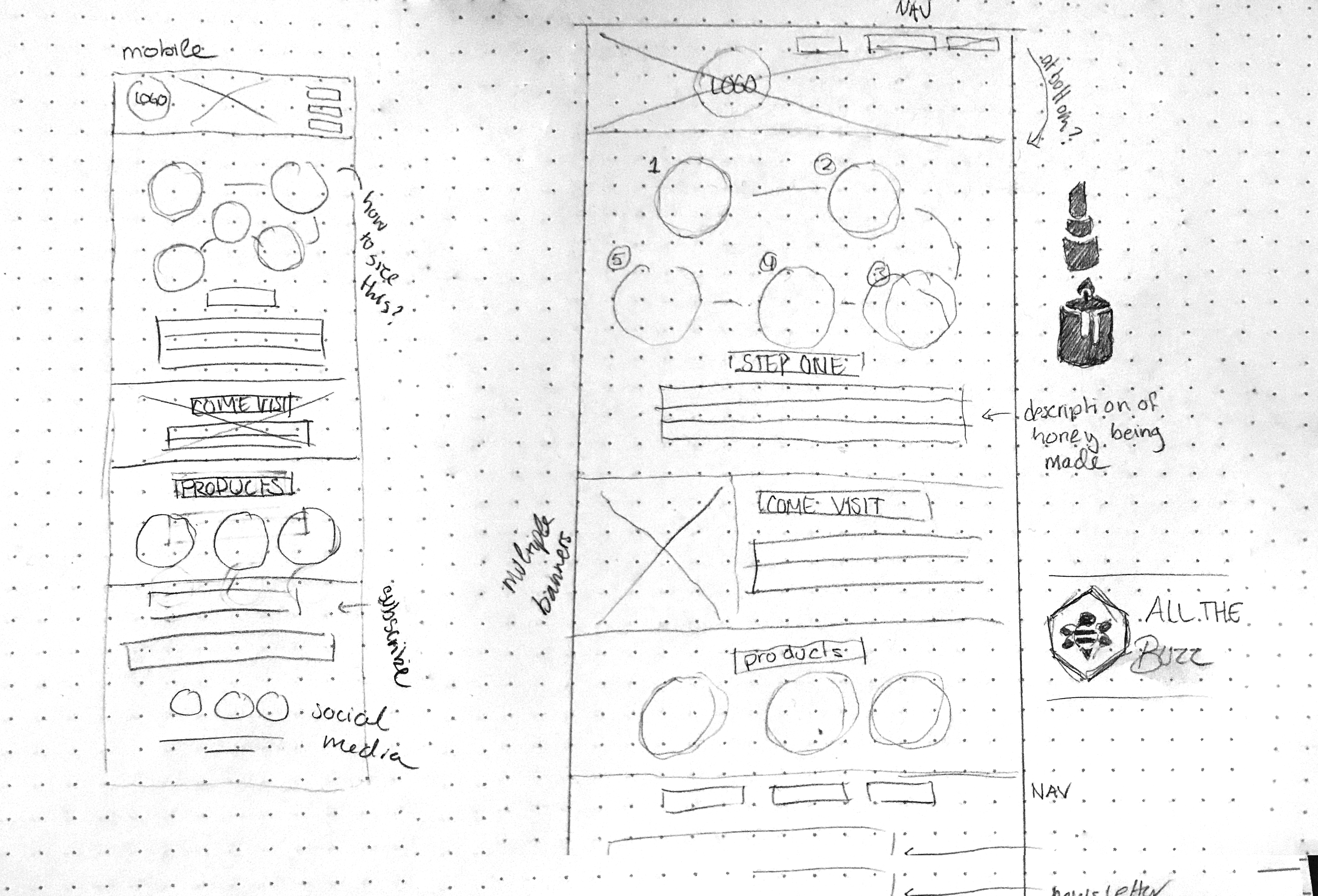 all the buzz web sketches